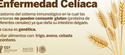 Qué es la Enfermedad Celíaca? | Servicios de Salud de Yucatán - gob.mx
