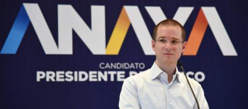 Ricardo Anaya, el candidato que mucho abarca... y poco aprieta ... - elcerebrohabla.com