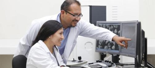 Cienciactiva impulsa investigación científica para desarrollo de ... - peru.com