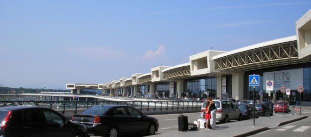 Per uno scambio di bagagli all'aeroporto di MIlano Malpensa trovati in un trolley 69 uccellini nascosti dentro bigodini
