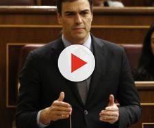 Pedro Sánchez acusado de haber falseado su curriculum