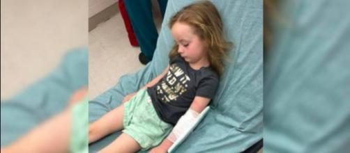 O carrapato foi encontrado pela própria mãe enquanto ela penteava o cabelo da filha (Via Facebook - Jessica Griffin)