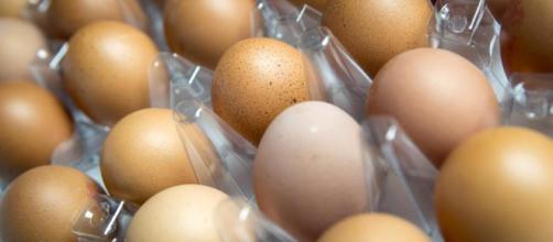 Uova contaminate da antibiotici usati illegalmente: ritirate a milioni in Polonia, a migliaia in Germania.