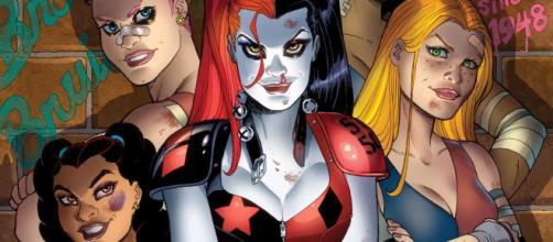 La película de Harley Quinn podría ser con las Bird of Prey | QiiBO - qiibo.com