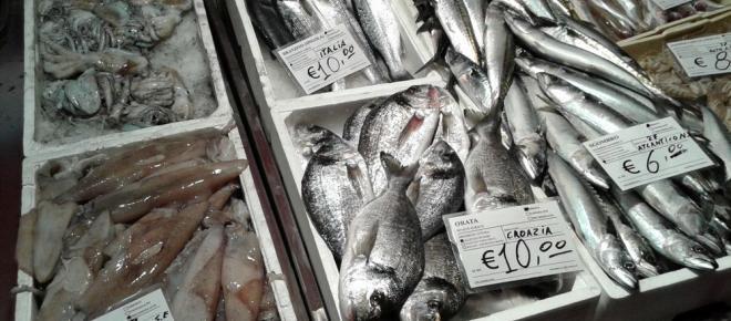 Italia tra i maggiori consumatori di prodotti ittici insieme al Sudafrica