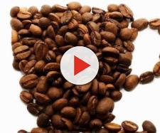 La caffeina sveglia alcuni circuiti genetici