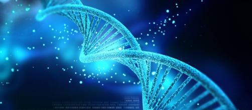 Sarà possibile sintetizzare il DNA più velocemente.