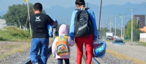 Niños que migran con sus familias son separados en Estados Unidos