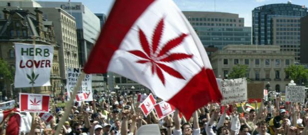 Kanada: Legalisierung von Marihuana einen Schritt weiter ... - bento.de