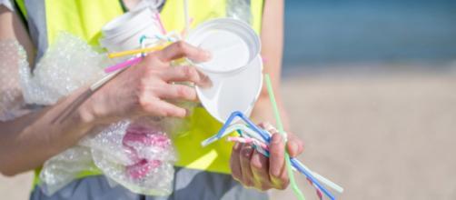 Déchets dans la mer : les pailles en plastique bientôt interdites ? - 1jour1actu.com