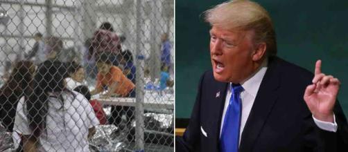 Trump y la separación de niños de sus familias inmigrantes - semana.com