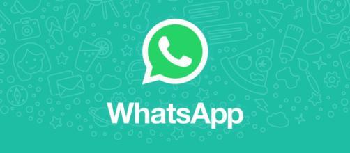 WhatsApp: arriva il bollino per i messaggi inoltrati
