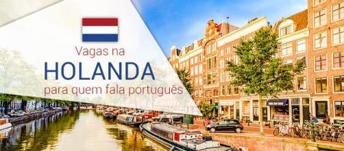 Holanda contrata profissionais com fluência em português