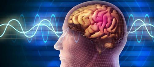 Alzheimer e virus dell'herpes: scoperta possibile relazione