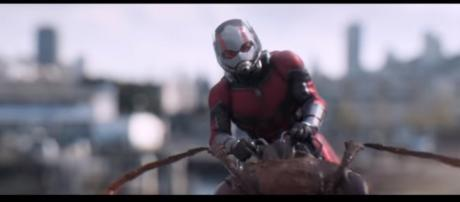 Marvel Studios' Ant-Man and The Wasp | Flock TV Spot [Image Credit: Marvel Entertainment/YouTube screencap]