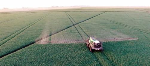 Le glyphosate, substance herbicide au cœur de bien des débats, semble devenir le symbole d'une défiance envers la communauté scientifique