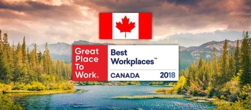 Fique por dentro das melhores empresas para brasileiros no Canadá