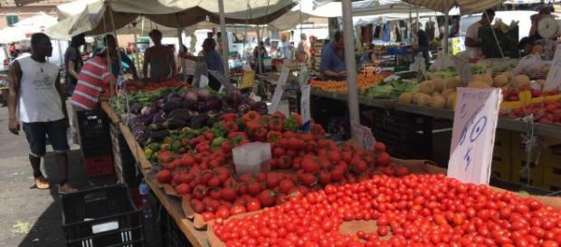 Les producteurs agricoles italiens exploitent les migrants dans le sud du pays