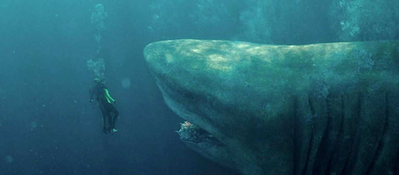 shark – il primo squalo - photo #11