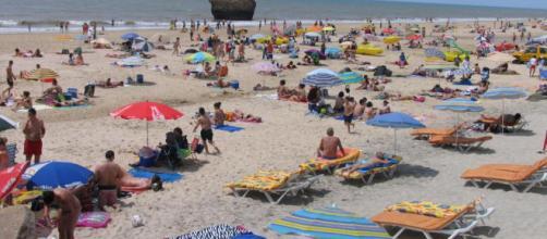 Ecologistas en Acción muestra un estudio de la situación ambiental de las playas españolas