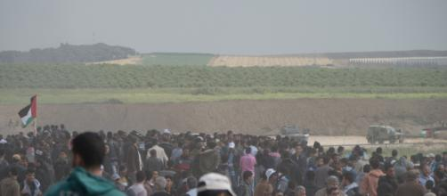 Main News - palestinemonitor.org