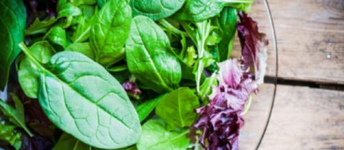 Allarme per un lotto di insalate miste contaminate da salmonella