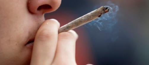 L'Italia ai primi posti in Europa per il consumo di cannabis e cocaina