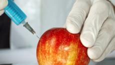 Bayer adquiere Monsanto y elimina su nombre por su mala imagen con los trangénicos
