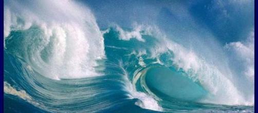 El 8 de junio El celebra el Día Internacional de los Océanos