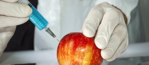 Los alimentos transgénicos: ventajas e incovenientes