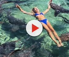Katarina Zarutskie, modella che è stata aggredita da uno squalo alle Bahamas