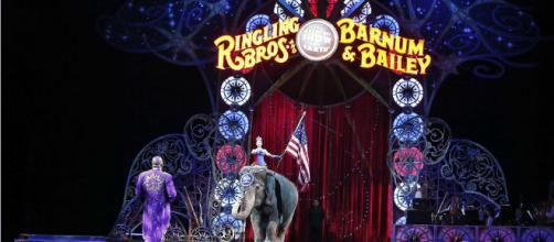 El show con animales salvajes mantiene al Circo de la Nación de China con poca audiencia