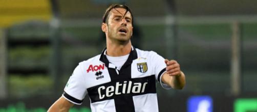 Calaiò, attaccante del Parma - gazzamercato.it