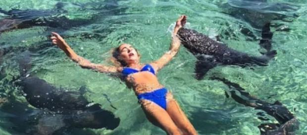 Un pericoloso squalo ha atteccato una donna intenta a farsi una foto da mettere su Instagram