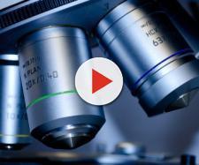 Tumore del colon-retto: brevettato un test per una diagnosi innovativa e non invasiva