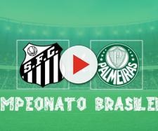 Brasileirão: Santos x Palmeiras ao vivo