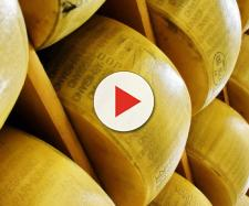 Parmigiano e Crudo di Parma sotto la lente d'ingrandimento (Ph. Pixabay - zalazaksunca).