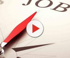 Offre lavoro da più di mille euro ma non trova personale disponibile