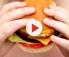 Salute: l'obesità costa all'Italia 9 miliardi di euro l'anno - meteoweb.eu