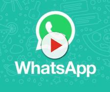 WhatsApp: arriva Momo, lo scherzo che incute paura
