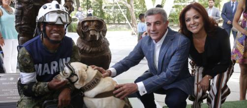 MEXÍCO / Erigen una estatua en honor a 'Frida', una perra rescatista de la Marina mexicana