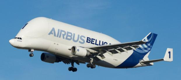 Airbus Beluga arriving at Toulouse–Blagnac Airport (Image courtesy - Brian Bukowski, Wikimedia Commons)