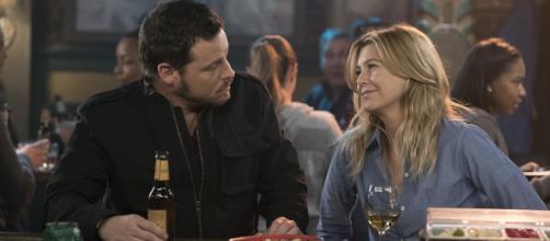 Meredith Grey - Alex Karev FONTE: Tvline