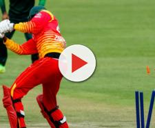 Pak v Zim 5th odi live stream on PTV Sports (Image via TheRealPcb/Twitter)