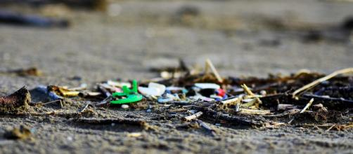 Plastic washing up on the coast daily (Image courtesy – Ocean Blue Project, Inc, Wikimedia Commons)