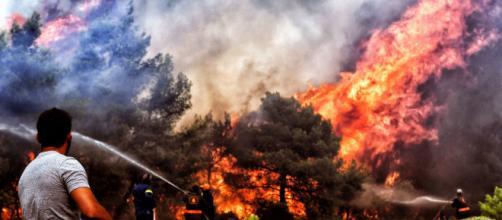 GRECIA/ Incendios: bomberos y voluntarios siguen en la búsqueda de desaparecidos