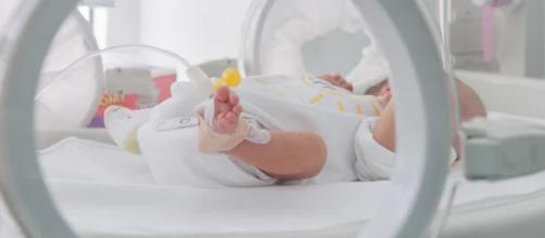 PAÍSES BAJOS/ Suspenden prueba de Viagra en embarazadas tras muerte de 11 bebés