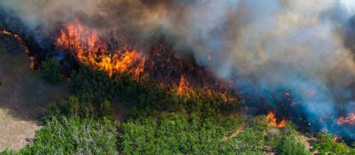 A view of the East Peak wildfire near La Veta, Colorado (Image courtesy - Darin Overstreet, Wikimedia Commons)