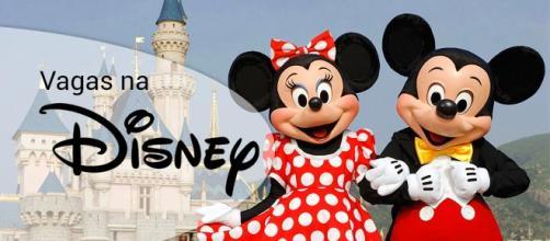 Grupo Walt Disney oferece milhares de vagas de emprego