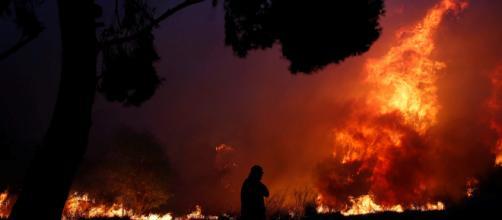 Gobierno de Grecia confirma 20 muertos por incendios forestales - televisa.com